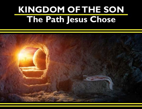 The Kingdom of the Son