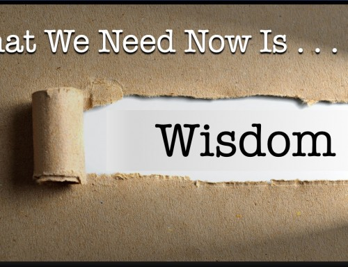 What We Need Now Is Wisdom